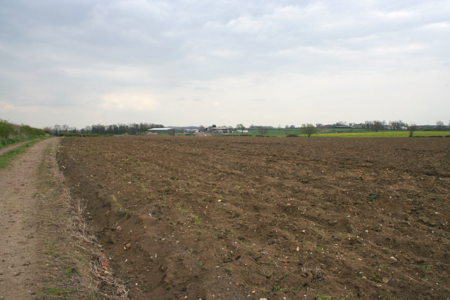 Farmland near Old Dalby