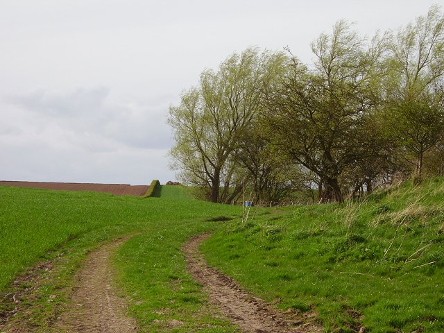 Harpertoun