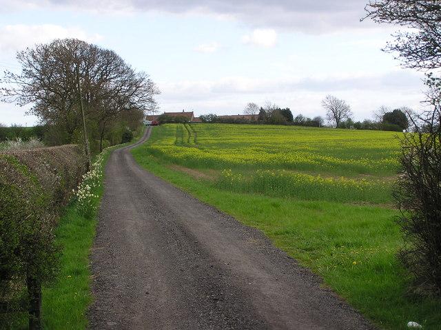 Corn Hill Farm