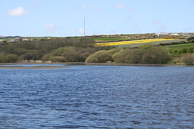 An Arm of Stithians Reservoir