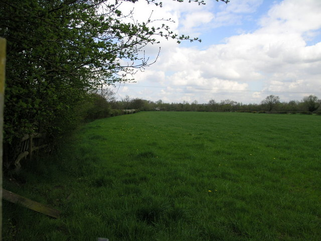 Footpath to the A50