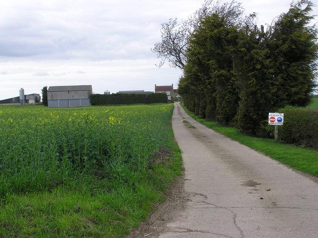 Bagley  Farm