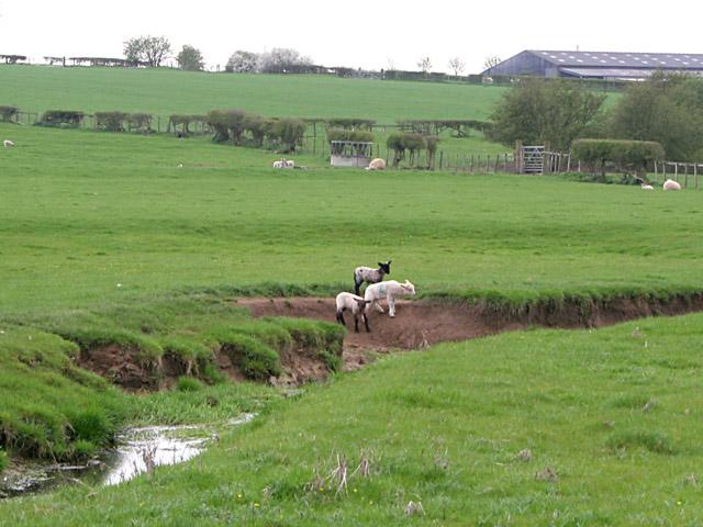 Farmland off Occupation Lane, Willoughby