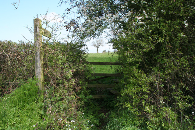 West Buckland: footpath to Buckland Farm