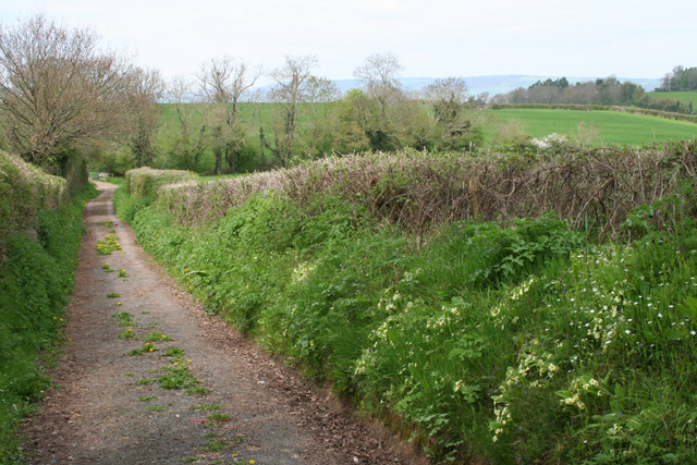 Trull: track to Castleman's Hill