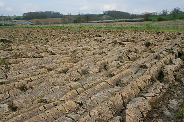 Ploughed field near Old Dalby