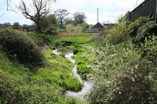 Bradford-on-Tone: Grand Western Canal at Trefusis