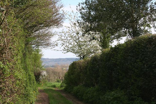 Nynehead: footpath to Bradford-on-Tone