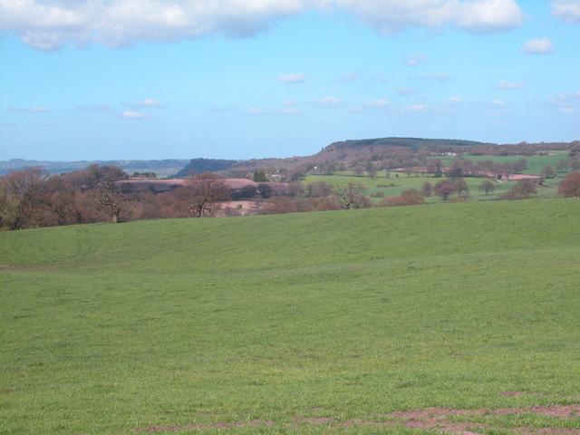 Near Droppingstone Farm
