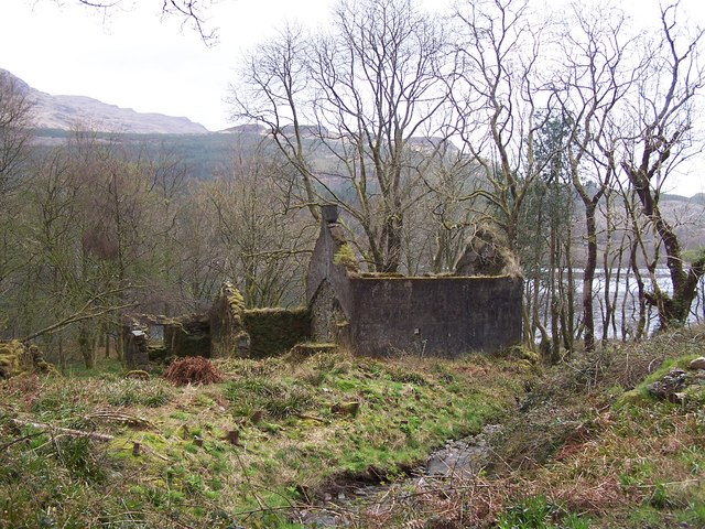 Loch Eck, Benmore-Glenbranter Forestry Road