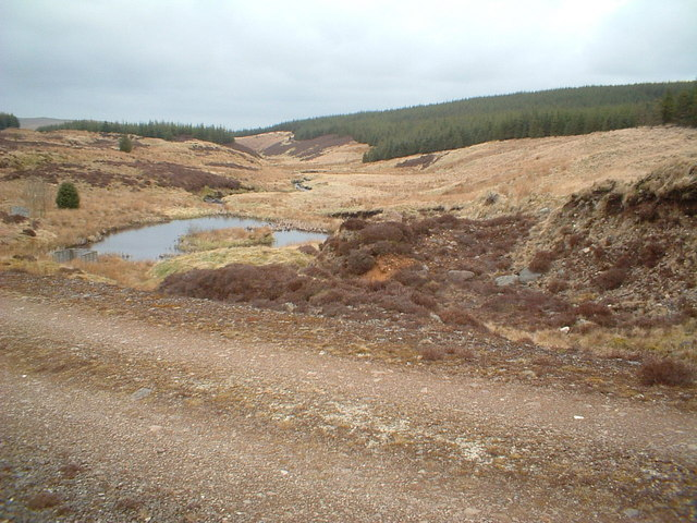 Forest road crossing Dipple Burn