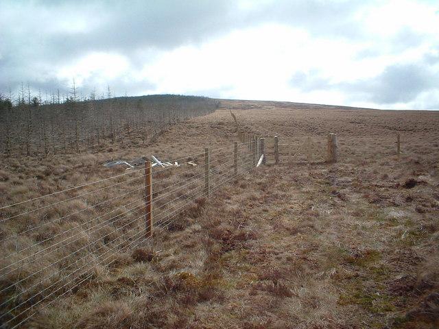 Lower slopes of Bibblon Hill