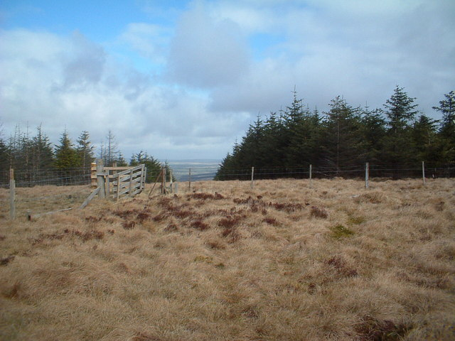 Bibblon Hill, fences and firebreak