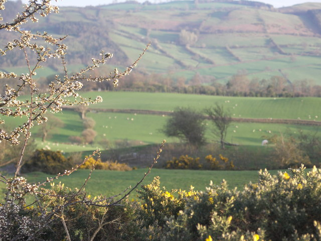 The view from Aran Lane