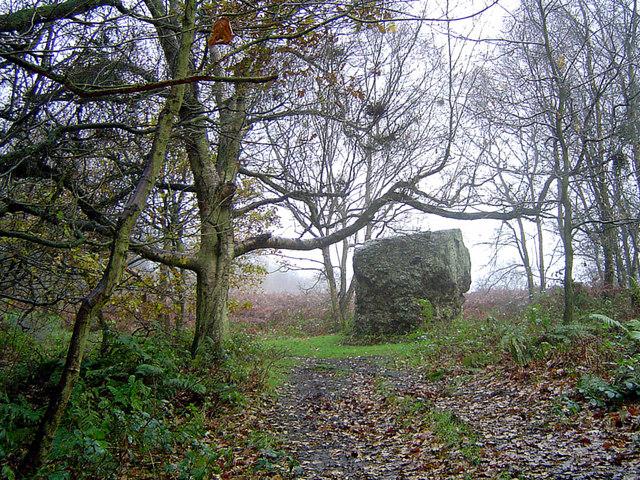 Large Boulder in Garbutt Wood