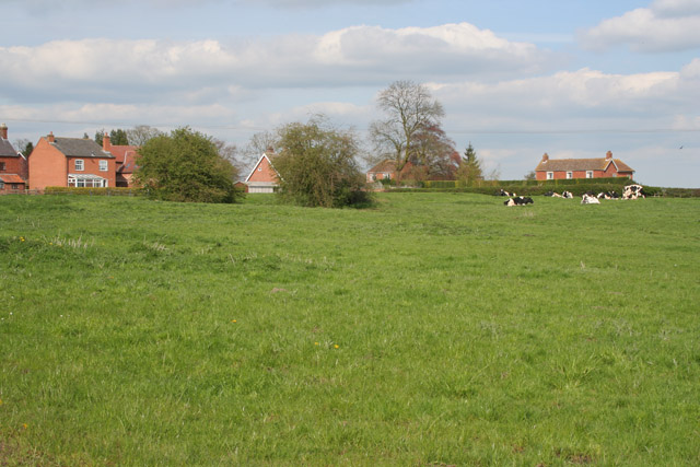 Pasture at Corner Farm, Upper Broughton