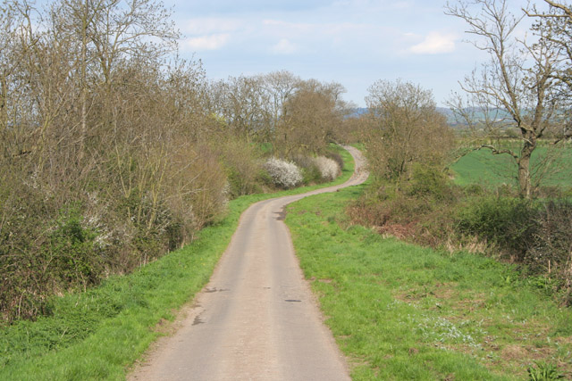 Green Lane near Hickling
