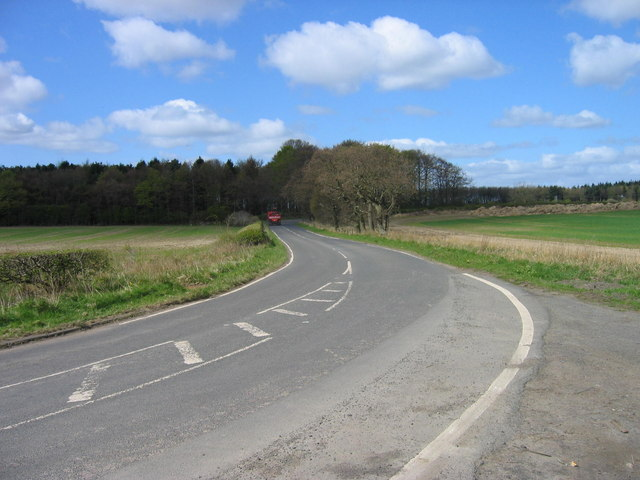 Country Road near Pegswood