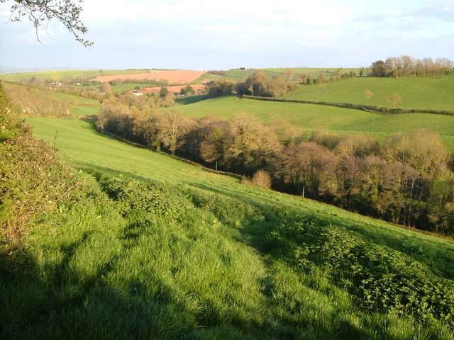 Fordland Bottom
