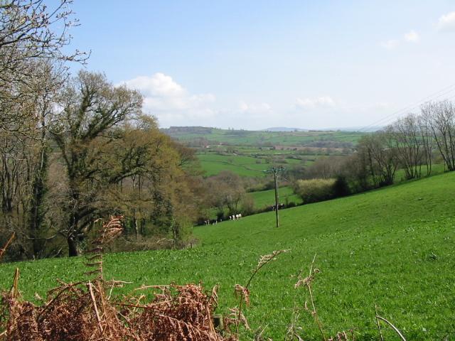 Farmland to the east of Mill Lane, near Penn
