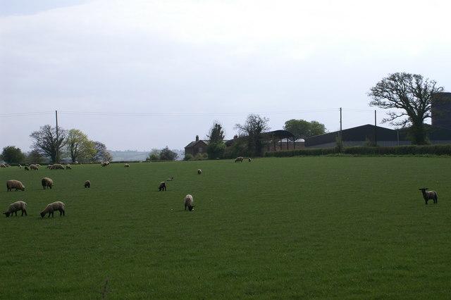 View to Crossfield Farm