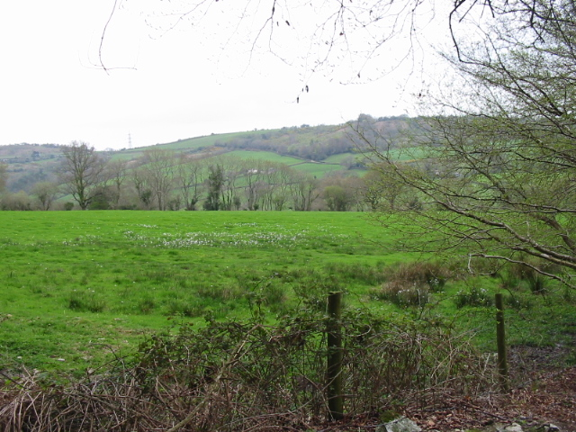 Farmland west of Coney's Castle