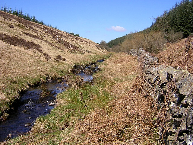 Gowkstane Burn, Forest of Ae
