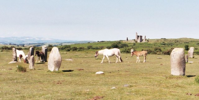 Wild Ponies at the Hurlers