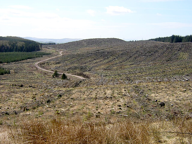 View From Great Hill Towards Watchman Hill