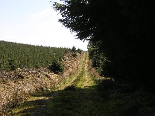 Track Along Windyhill Rig