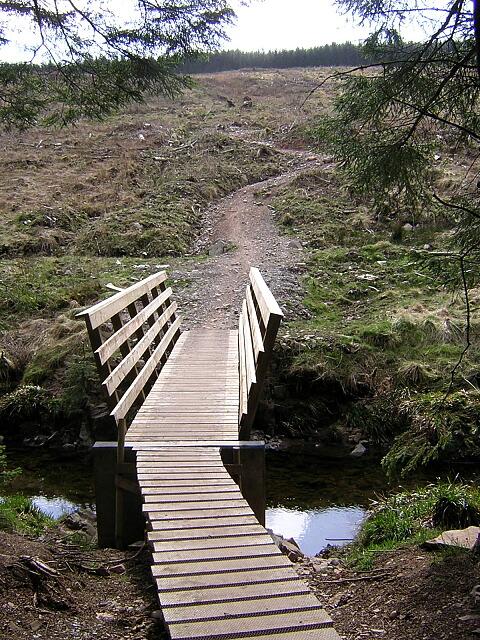 Cycle Bridge Over Capel Water