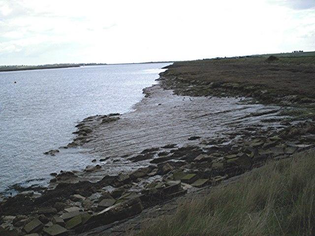 Saltings east of Landsend Point