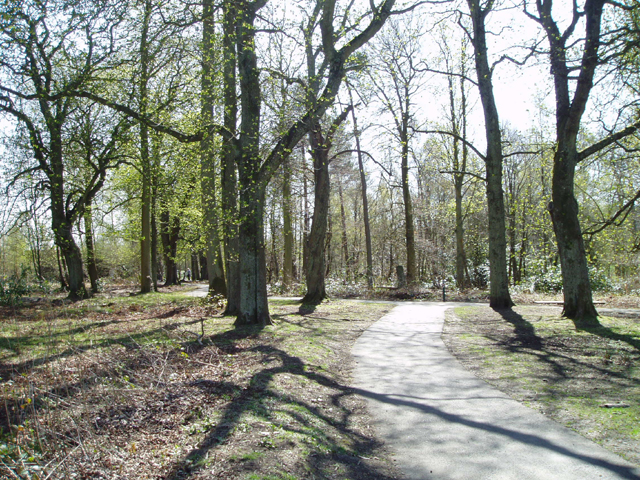 Plean Country Park