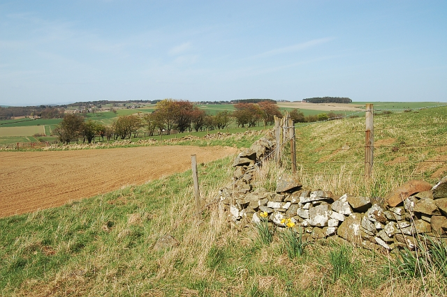 Kinninmonth Hill