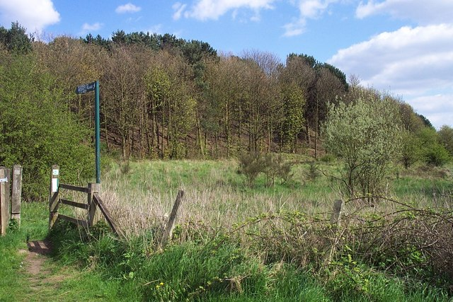 Wimblebury Mound