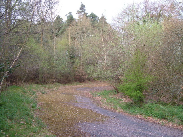 Disused main road on Haldon