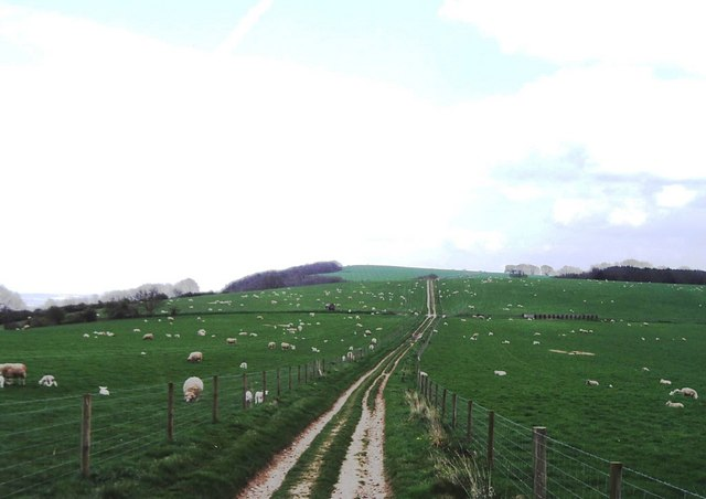 Didling Hill