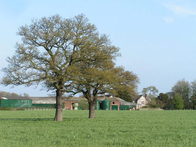 Burton Hall from Burton Green
