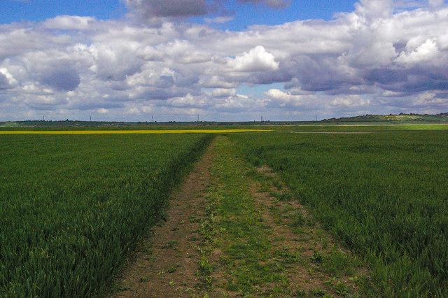 Footpath & Field