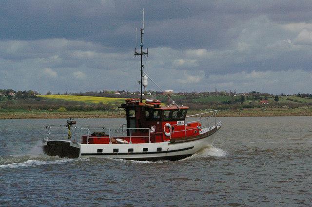 Iona and Bridgemarsh Island