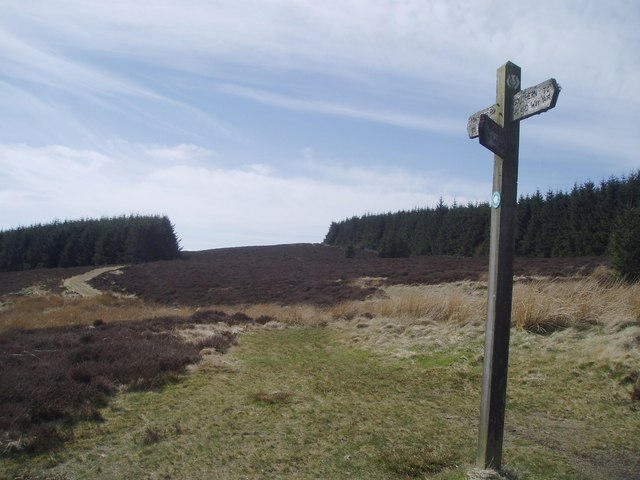Southern Upland Way with signpost