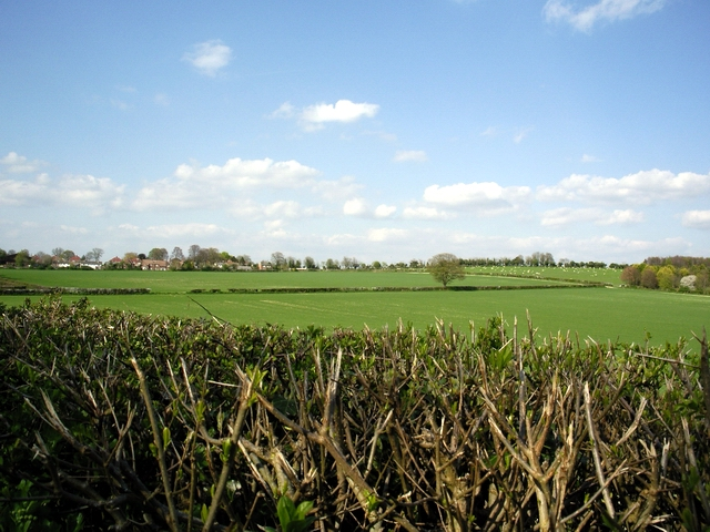 Farmland south east of Barton Stacey