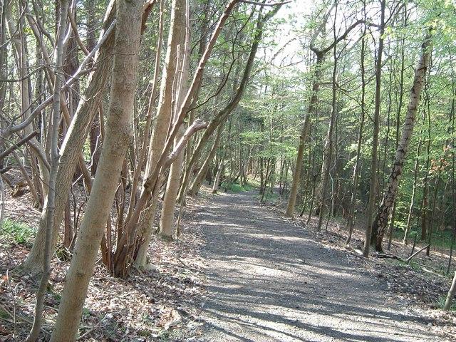 Ridgeway in Barn Wood