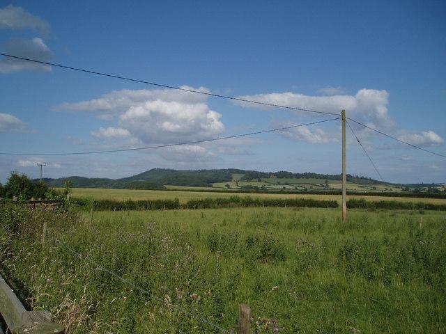 Sibdon Carwood fields