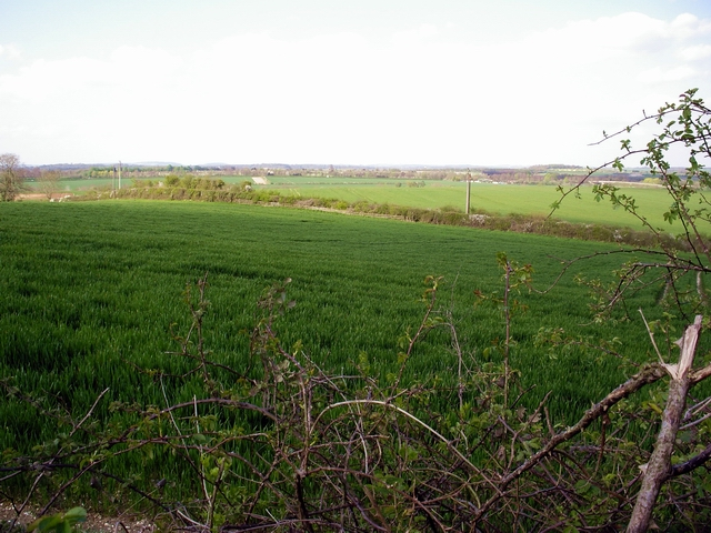 Fields and byway west of Barton Stacey