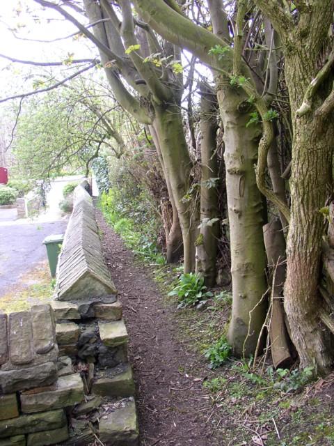 Footpath next to St Hilda's Church, Netheroyd Hill, Fartown