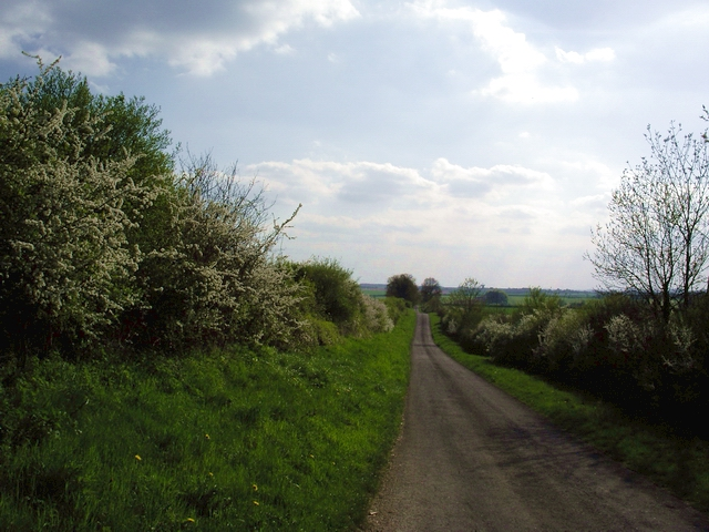 Road from Barton Stacey to Newton Stacey