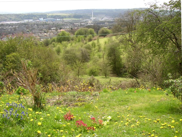 Viewpoint, Netheroyd Hill Liberal Club, Fartown