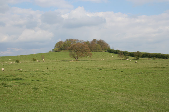 Lax Hill near Egleton, Rutland