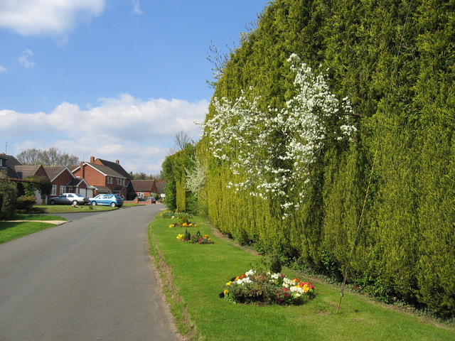 Pratt's Lane, Mappleborough Green